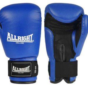 Boxerské/MMA rukavice